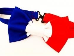 "Бабочка ""Франция"" от BowtiEsta"