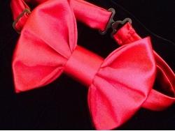 Бабочка из розового атласа от BowtiEsta